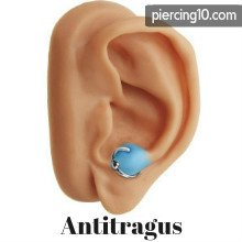 piercing antitragus