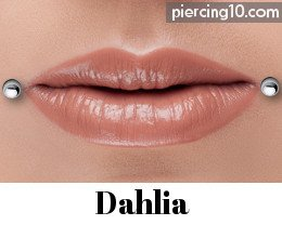 piercing dahlia