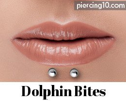 piercing dolphin bites